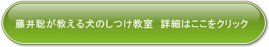 button_006